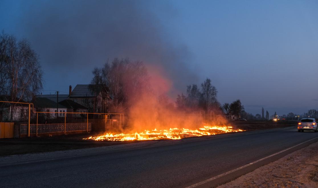 В Брянске подпалили траву на лугу возле озера Барсучья грива