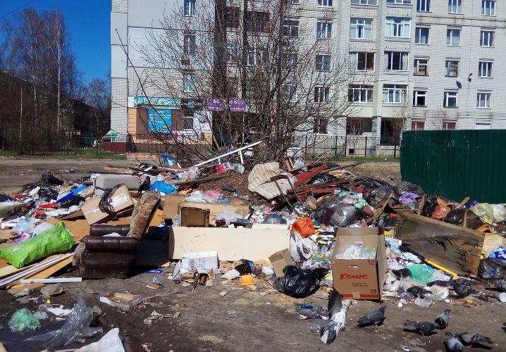 В Брянске зловонная свалка поглотила улицу Авиационную
