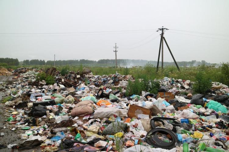 В брянских поселениях нашли несанкционированные свалки