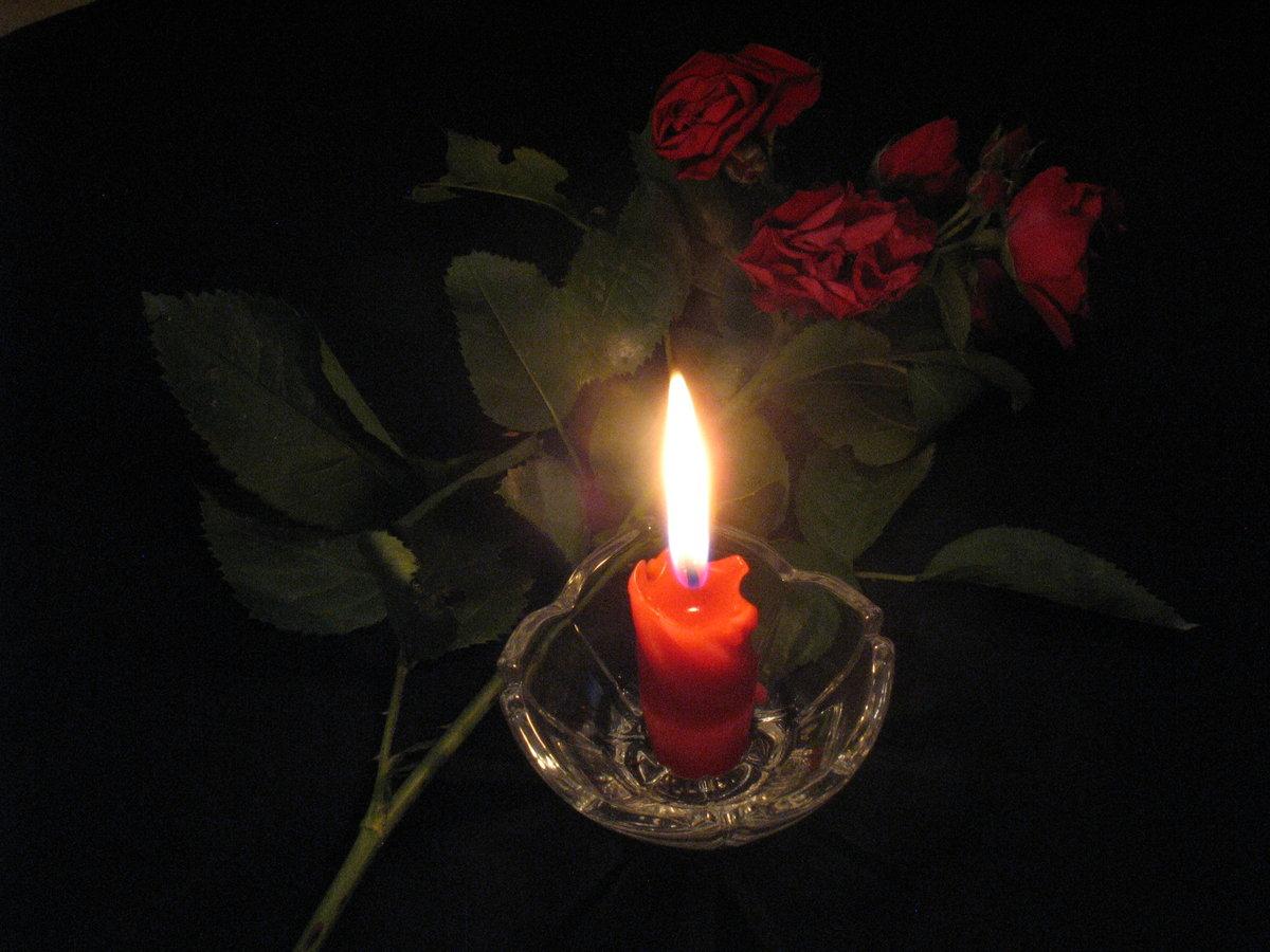 Врач-кардиолог из Дятьково Альбина Подоляко скончалась от коронавируса