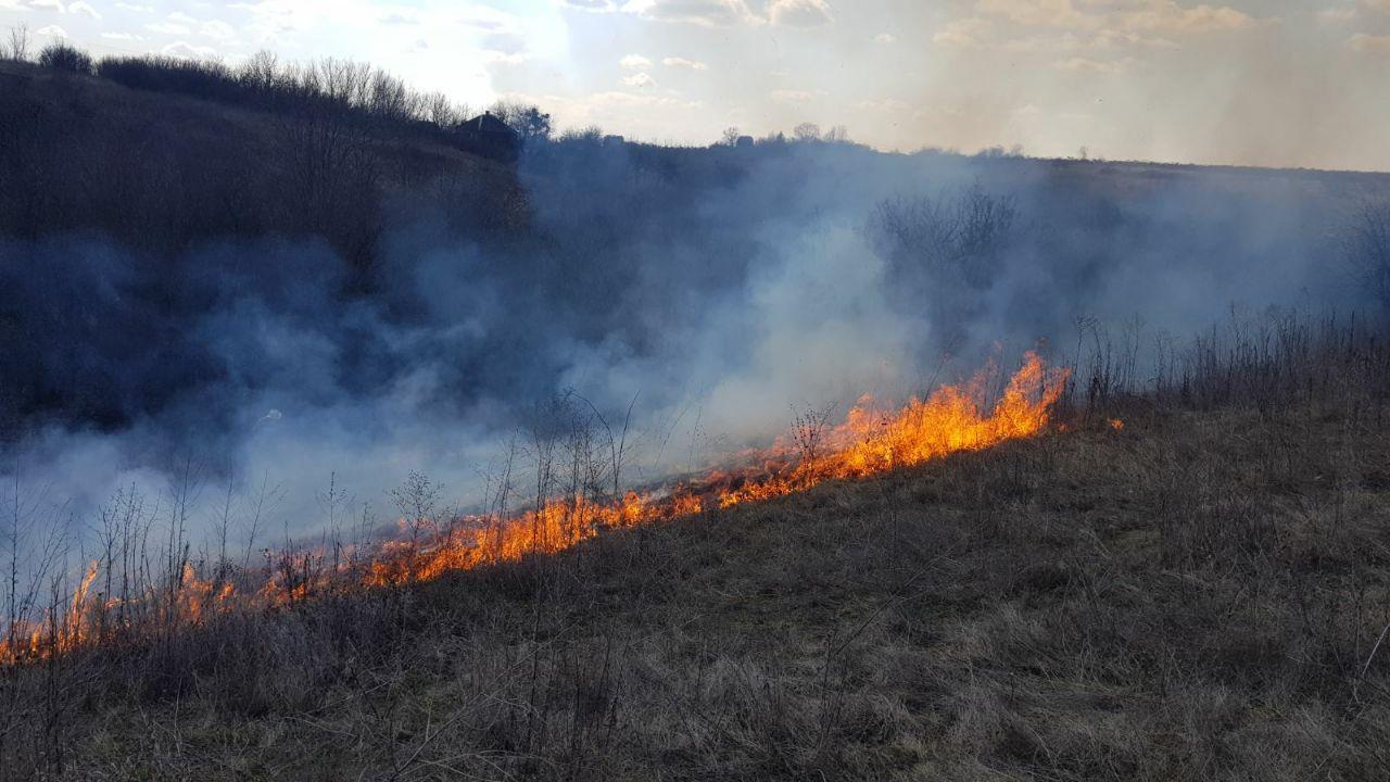 В Брянске неизвестные подпалили сухую траву в микрорайоне «Отрадное»