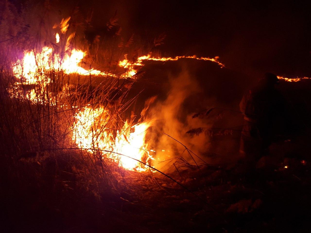В Брянском районе неизвестные подожгли сухую траву на улице Андрея Рублева