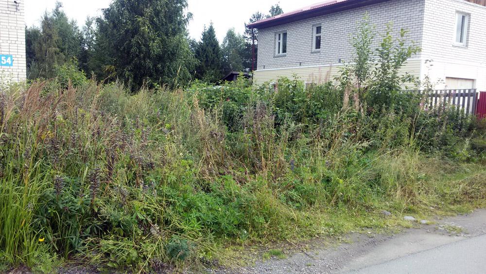 У собственника в Клинцовском районе суд изъял неиспользуемый земельный участок
