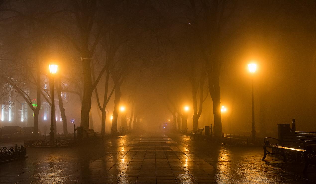 16 марта в Брянской области продолжатся дождь и туман