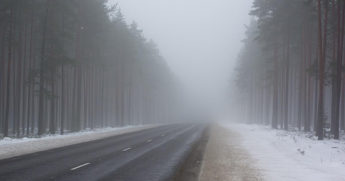 В Брянской области объявили желтый уровень опасности из-за тумана