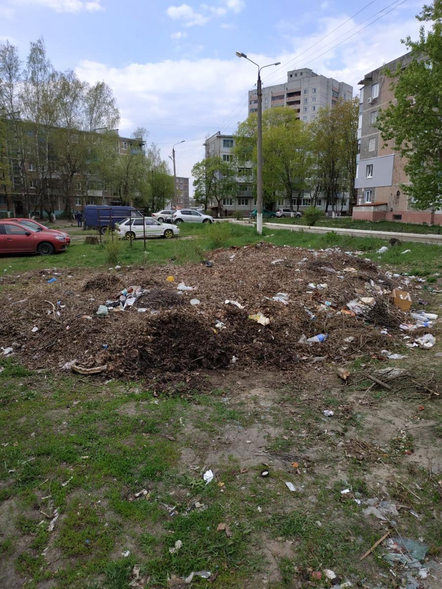 В Брянске полгода не убирают свалку на улице Донбасской