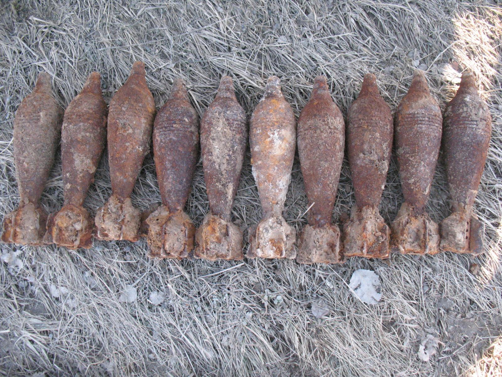 В Брасовском районе нашли 15 боеприпасов времен войны