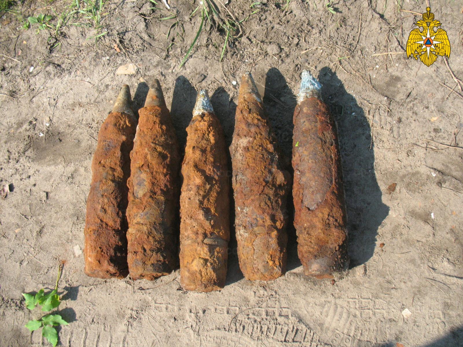 Под Брянском нашли пять артиллерийских снарядов
