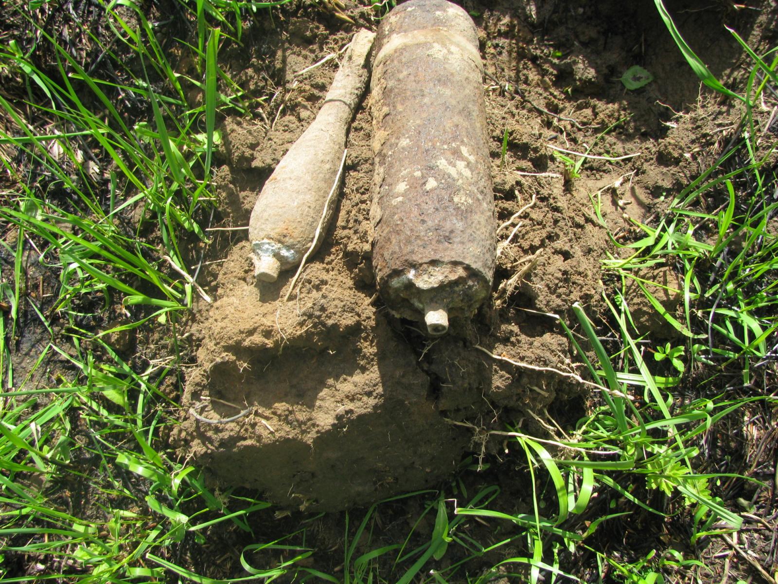 В Дубровском районе нашли боеприпасы времен войны