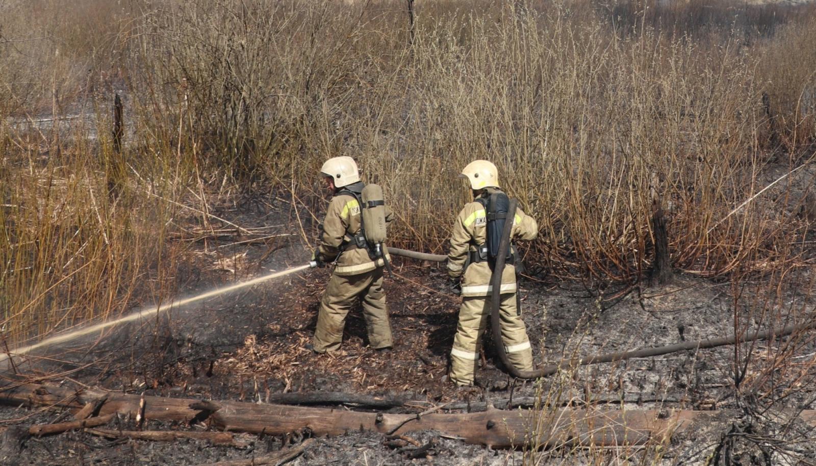 В Фокинском районе Брянска произошел крупный пожар