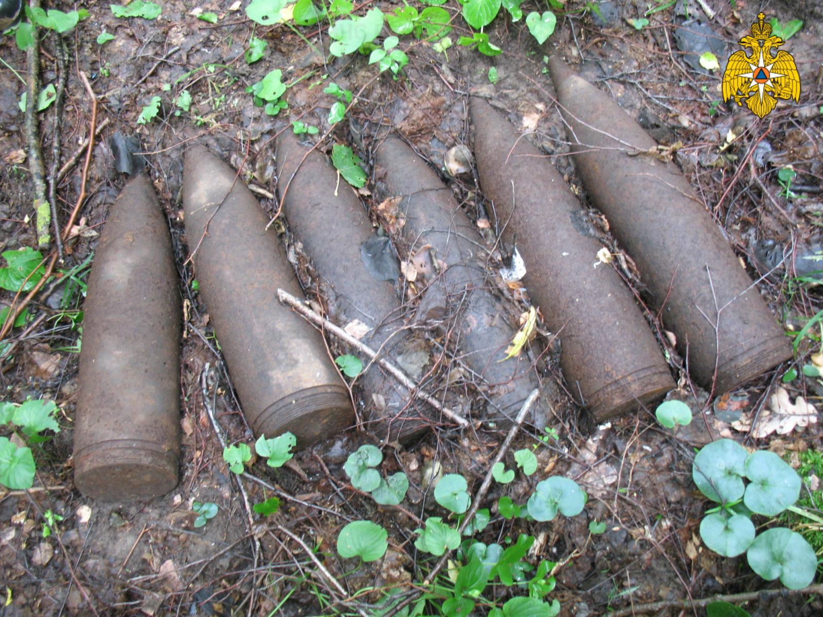 В Почепском районе нашли шесть боеприпасов времен войны