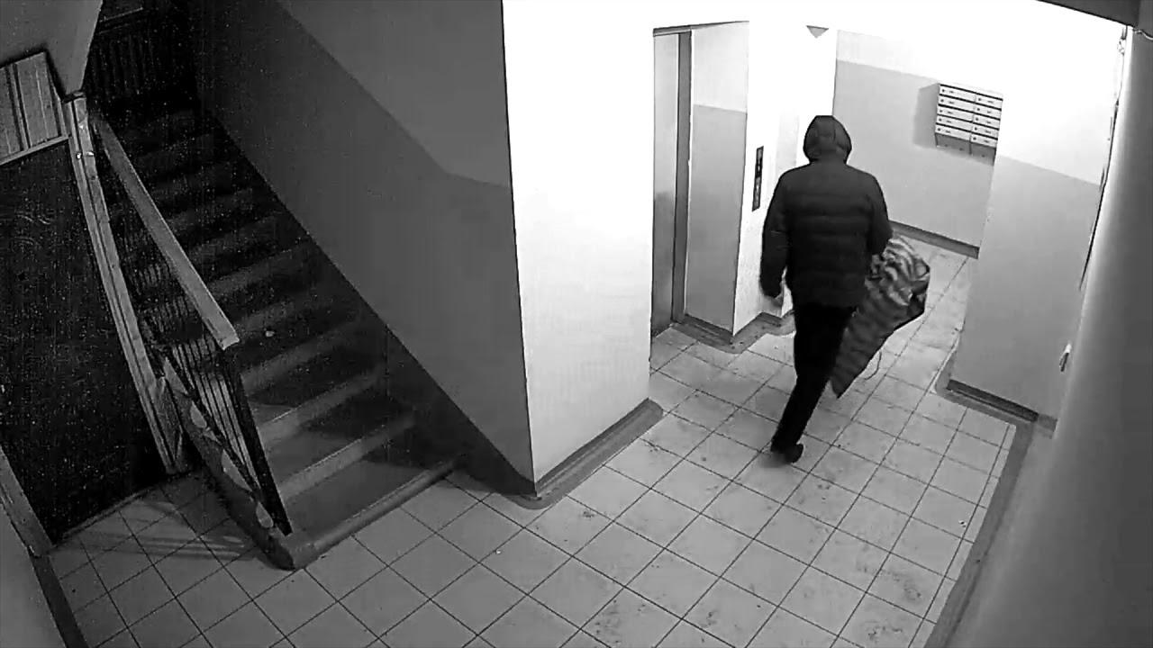 В Брянске подъездного вора засняли камеры видеонаблюдения