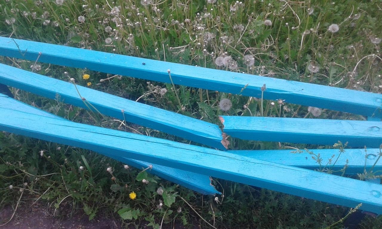 В Навле пьяные дебоширы сломали лавку и разбросали мусор