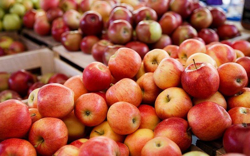 Брянские таможенники задержали 40 тонн подозрительных яблок