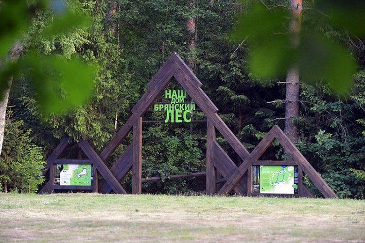 Заповедник «Брянский лес» приглашает добровольцев на волонтерские выходные