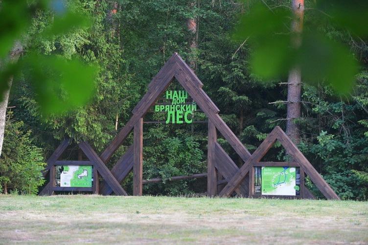 Брянцы смогут помочь перезимовать животным заповедника «Брянский лес»