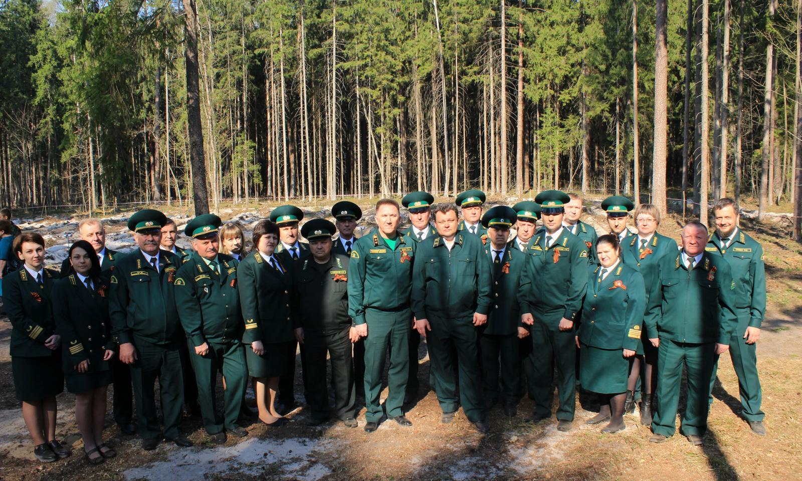 Для лесников Брянской области учредили Почетное звание