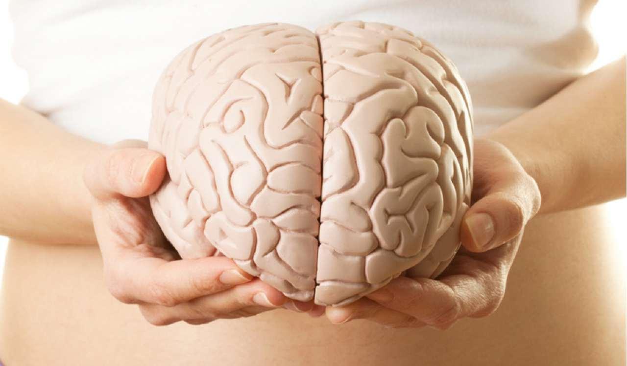 Наконец-то люди научились тормозить рак головного мозга