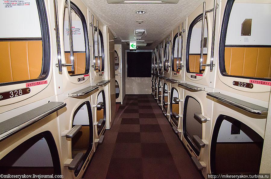 Капсулы вместо полок: РЖД усовершенствует поезда