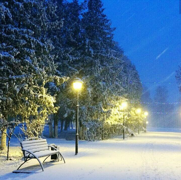Брянскую область встряхнули осадки и снегопад