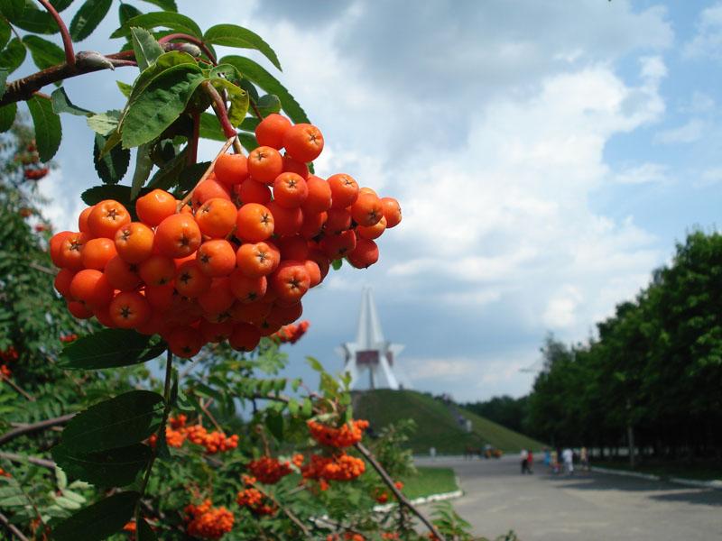 Гидрометцентр обещает в Брянске первые сугробы
