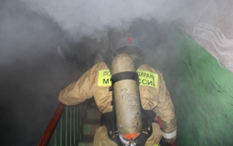Из горящей в Брянске квартиры спасли младенца