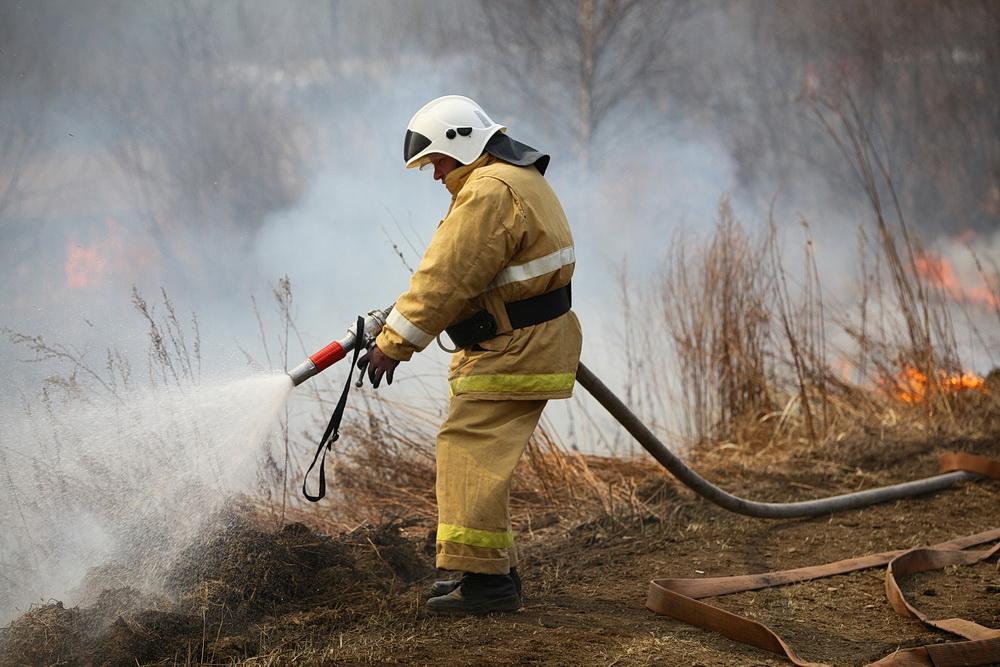 В Дятьковском районе потушен лесной пожар