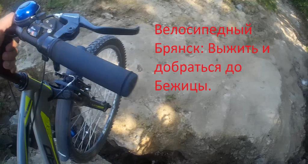 На велосипеде по Брянску: выжить любой ценой