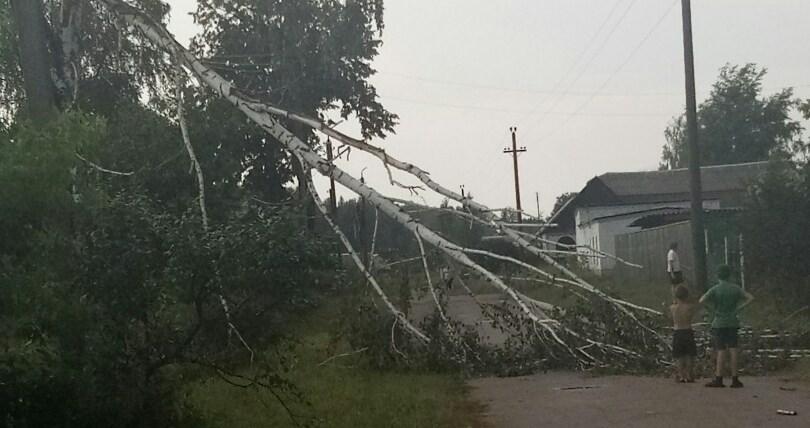 Жуковский ураган посрывал крыши и повалил деревья