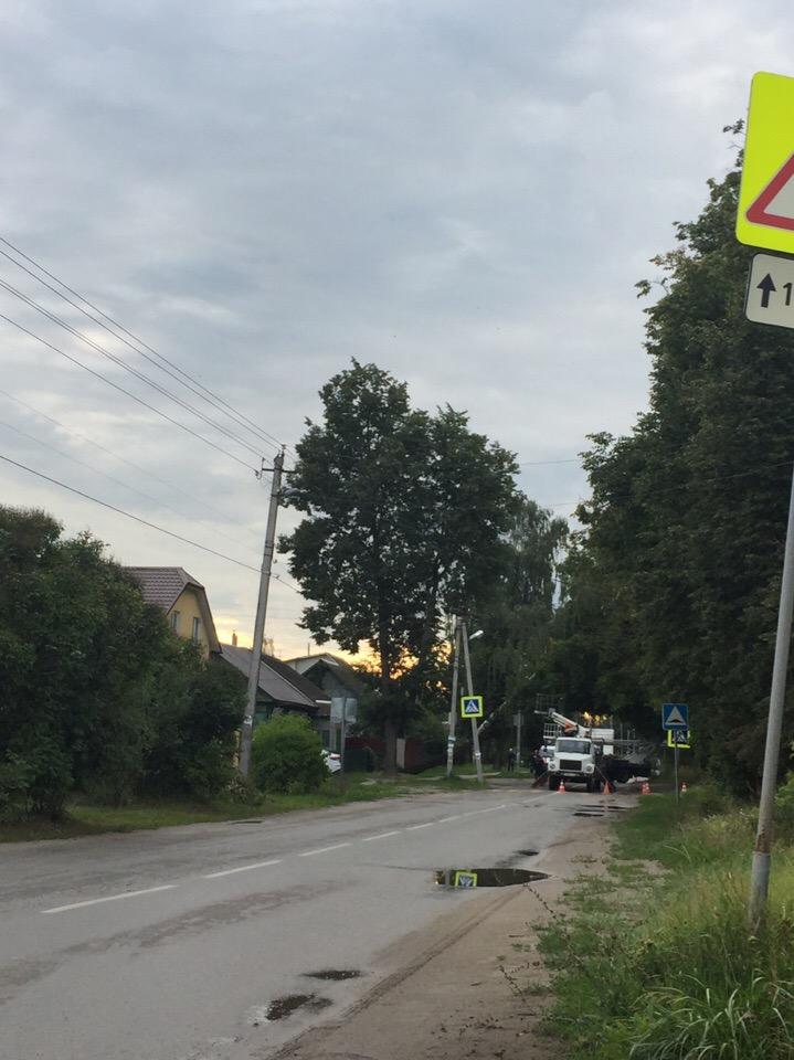 В Брянске очередное дерево грозило рухнуть на дорогу
