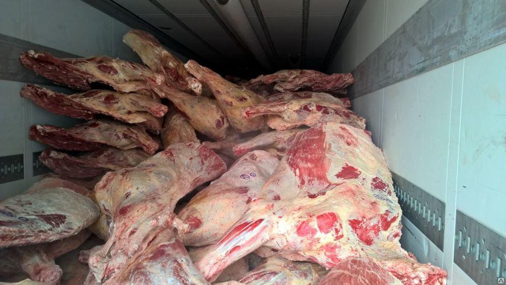 20 тонн говядины со срезанными клеймами развернул брянский Россельхознадзор