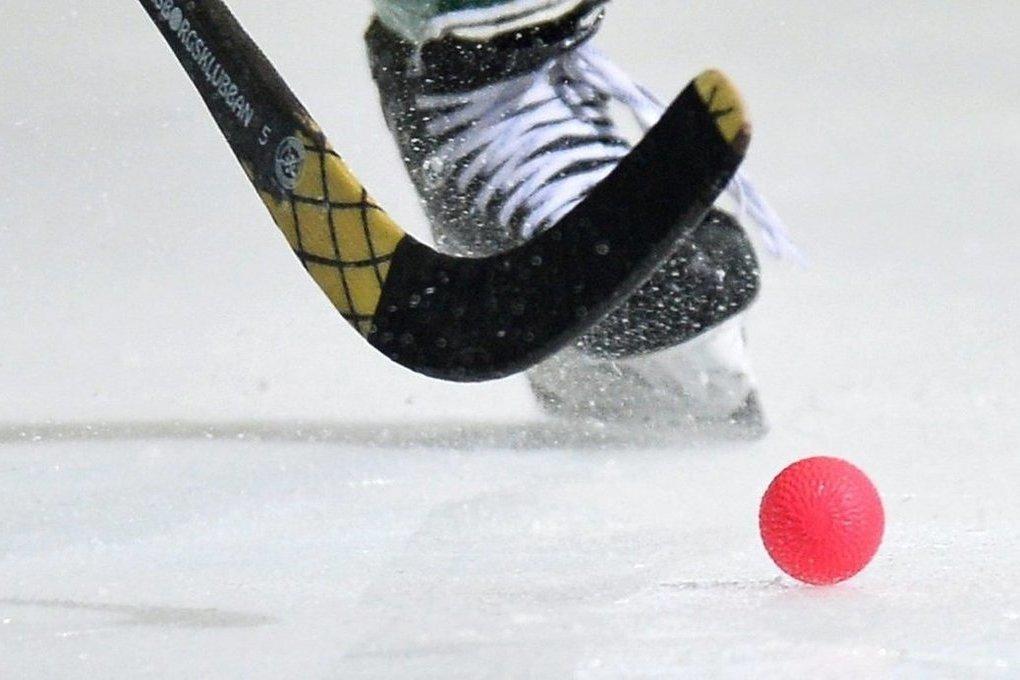 Благотворительный хоккейный матч пройдет в Брянске