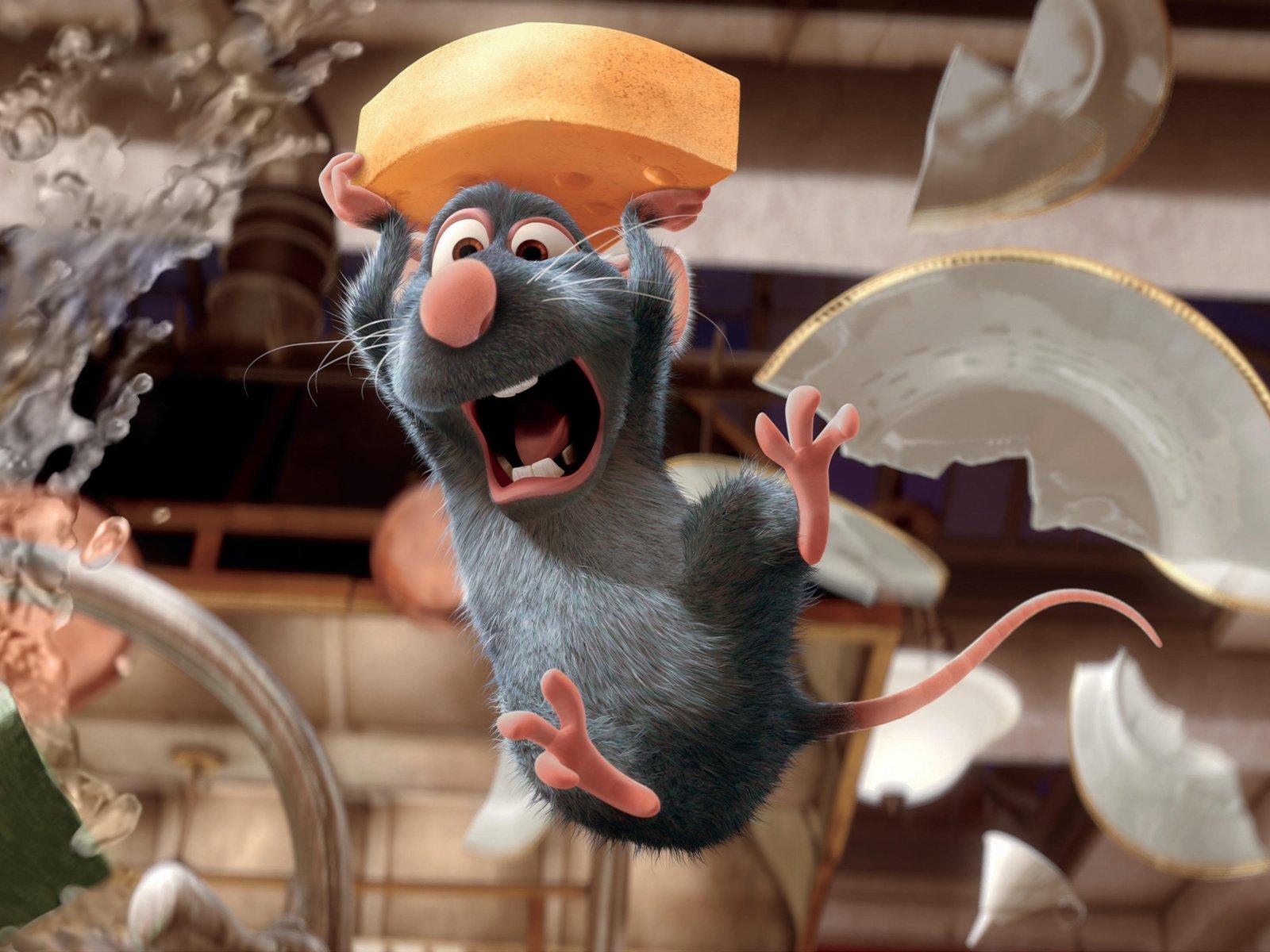 Недалеко от брянского ресторана сняли на видео полчища крыс