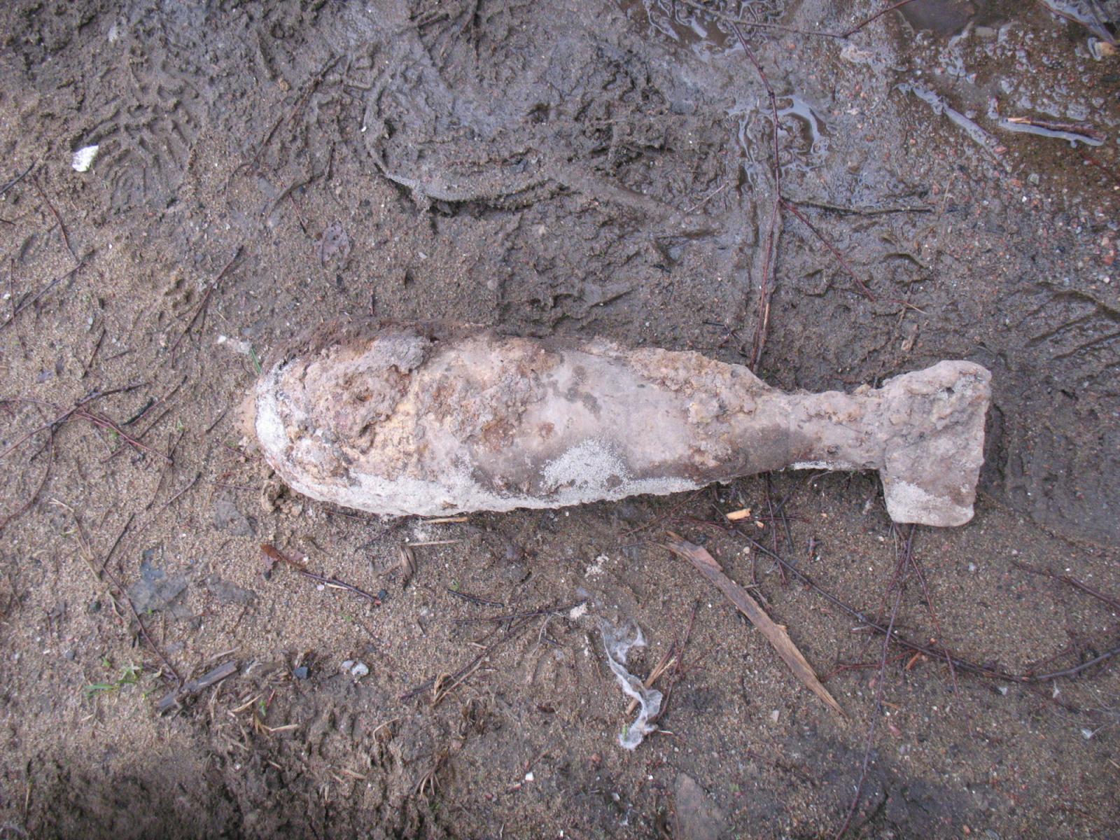 Под Навлей нашли минометную мину