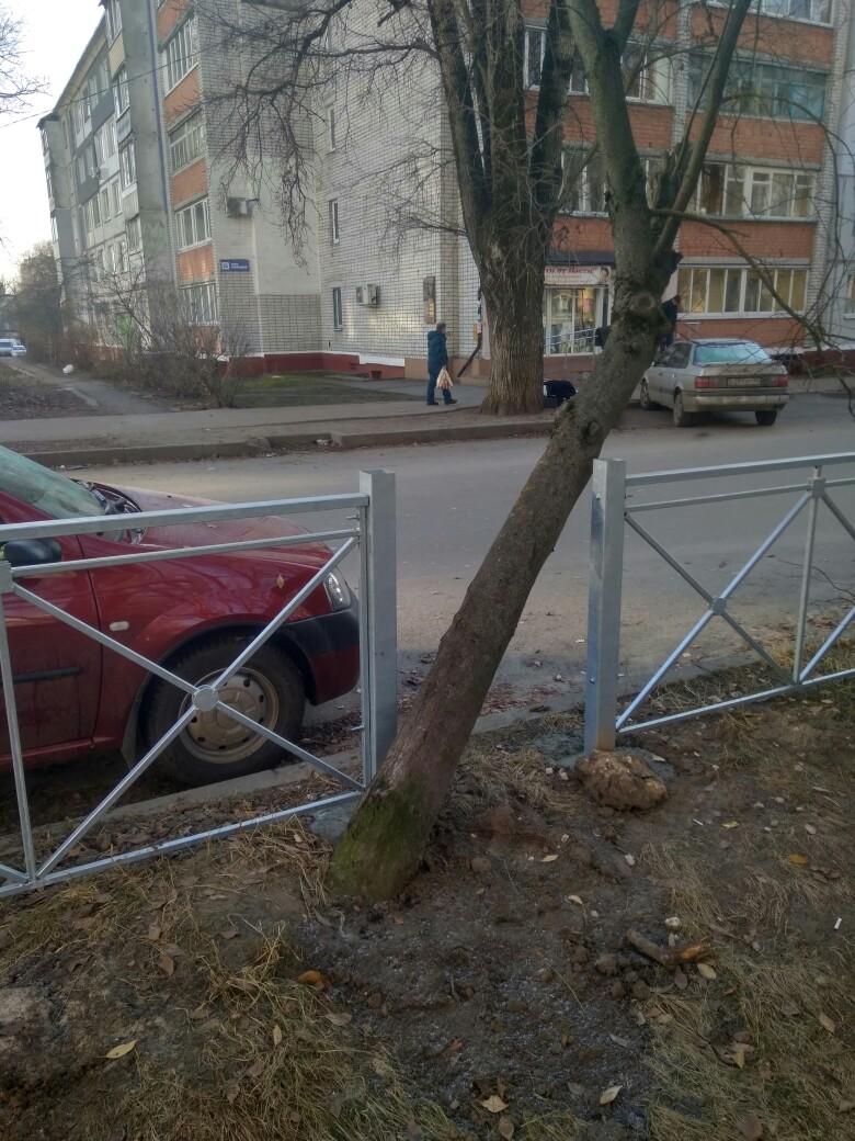 Жуткие заборы пощадили дерево на Ромашина