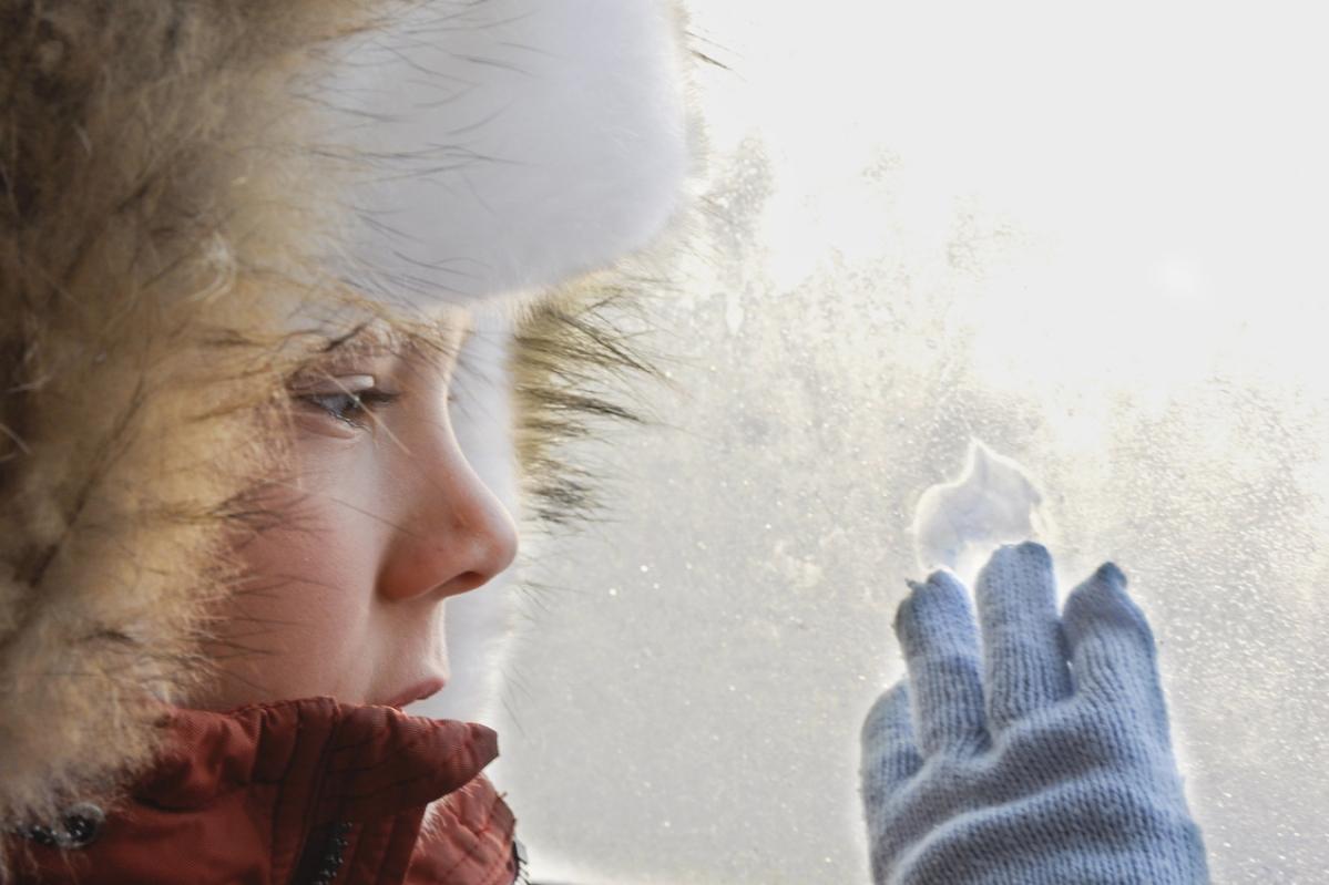 Этой ночью в Брянске похолодает до семи градусов мороза