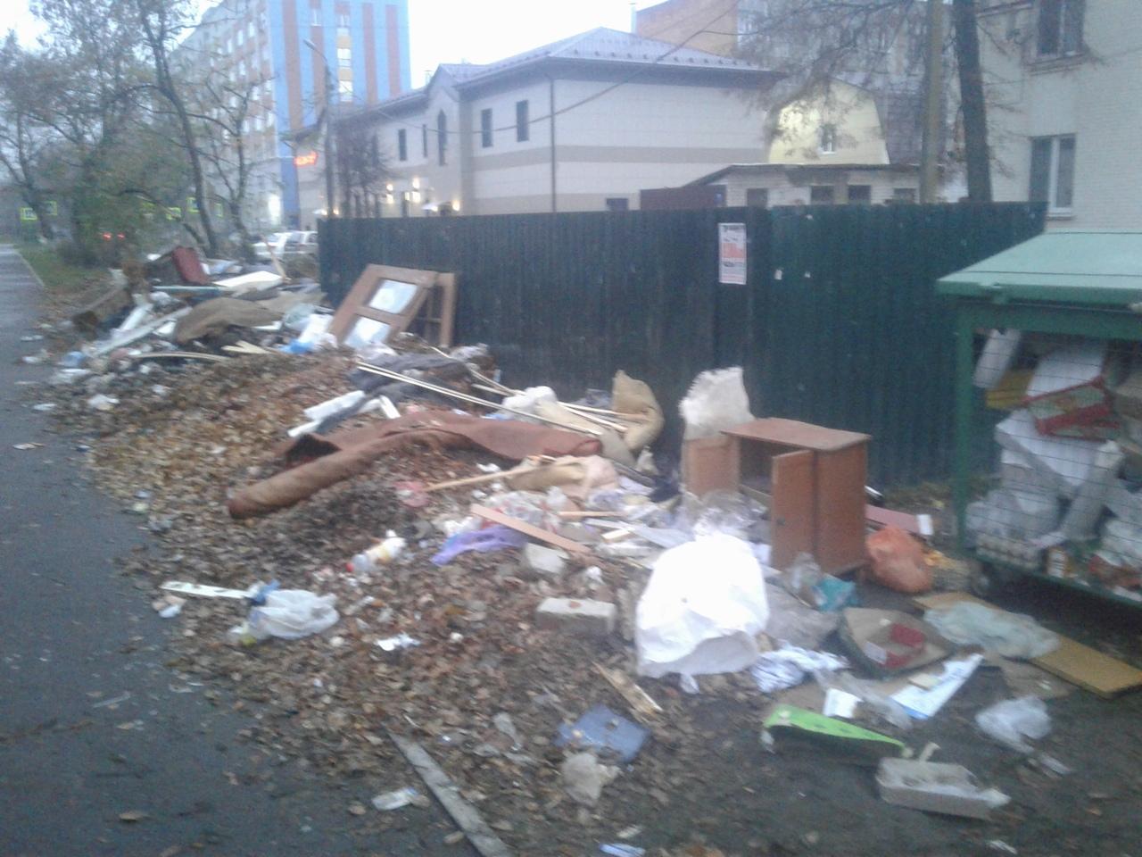 К детскому саду «Василек» в Бежице люди несут мусор