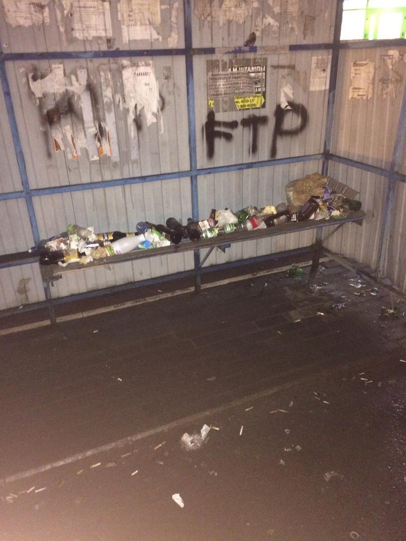 В Брянске остановку превратили в свинарник