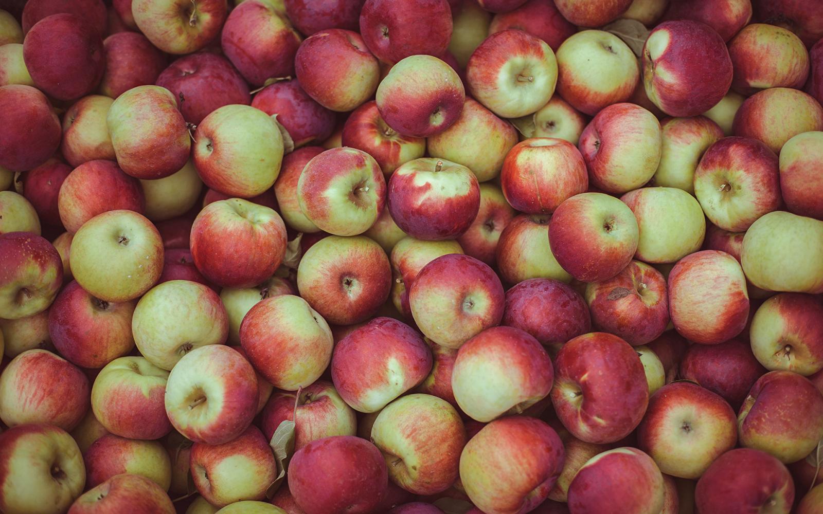 Накануне в области уничтожили более 4,5 тонн яблок