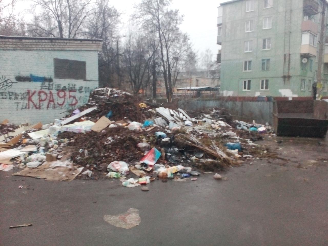 Рядом с детским садом в Брянске выросла огромная свалка