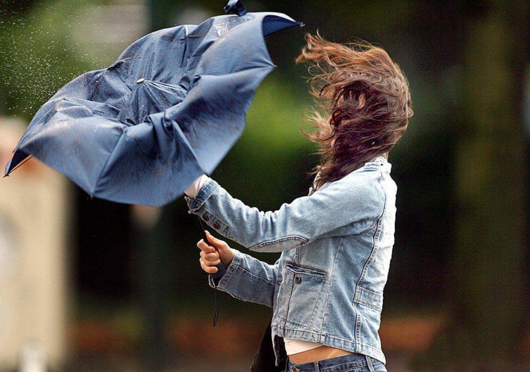 В Брянске возможны ЧС из-за сильного ветра