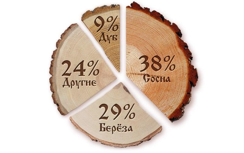 Лесообразующие породы Брянской области.