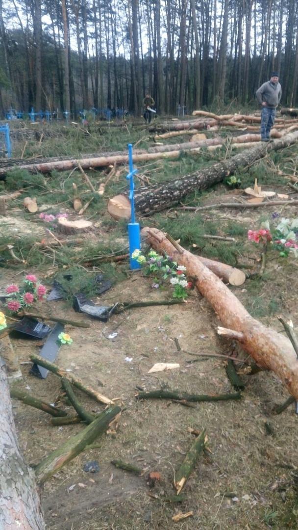 На кладбище Климово спиленные деревья разворотили могилы