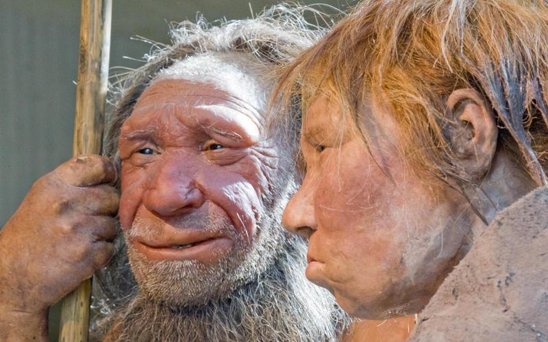 Быстро загораешь, куришь идолго спишь— значит, впредках были неандертальцы!