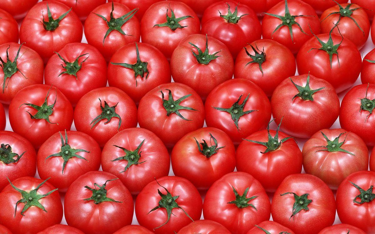 Турецким томатам не поверили брянские инспекторы