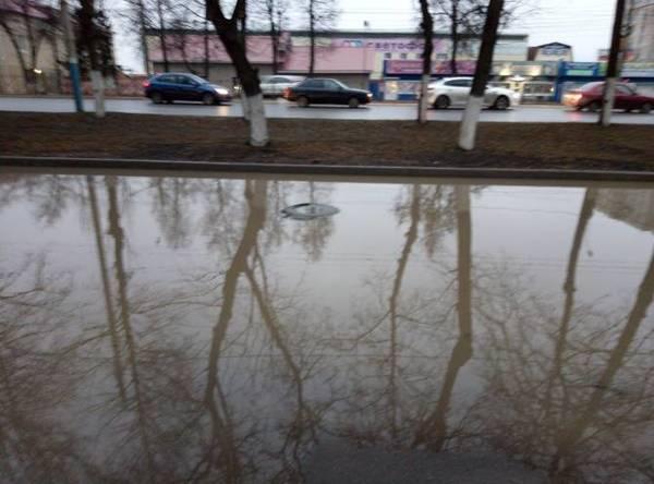 Тротуар возле лицея №27 в Брянске ушел под воду