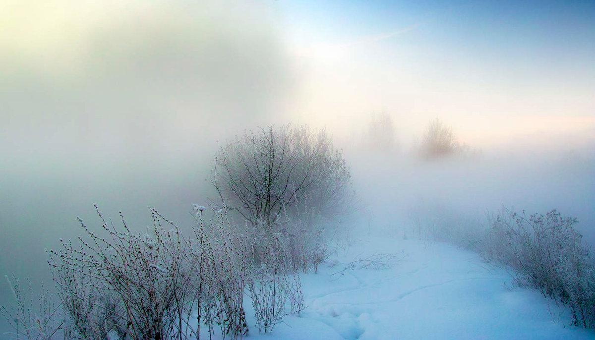 В Брянске объявлен «желтый» уровень погодной опасности из-за тумана